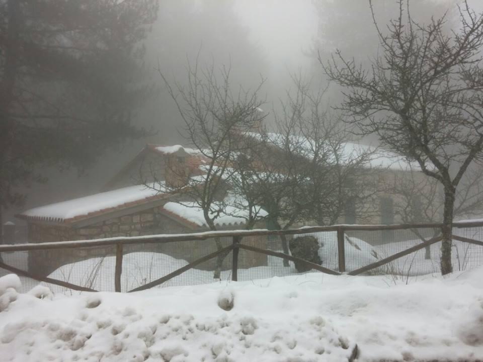 12026678 530991480385016 1717714913 n - La Sardegna sotto la neve, ricordi fotografici