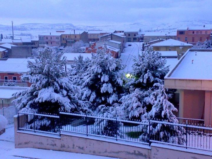 12033243 10207943581373527 6362534613141930225 n - La Sardegna sotto la neve, ricordi fotografici