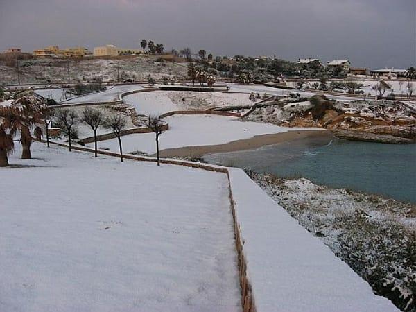 17313 1 1 - La Sardegna sotto la neve, ricordi fotografici