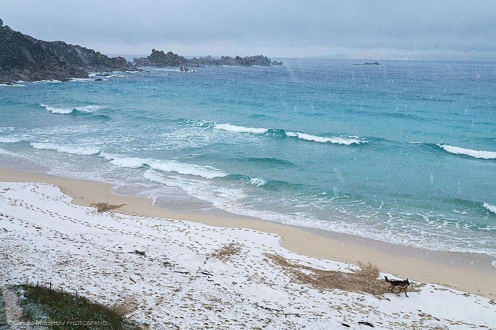 neve rena bianca - La Sardegna sotto la neve, ricordi fotografici