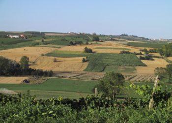 agricoltura sardegna 350x250 - Emergenza siccità: da domani al via le restrizioni idriche