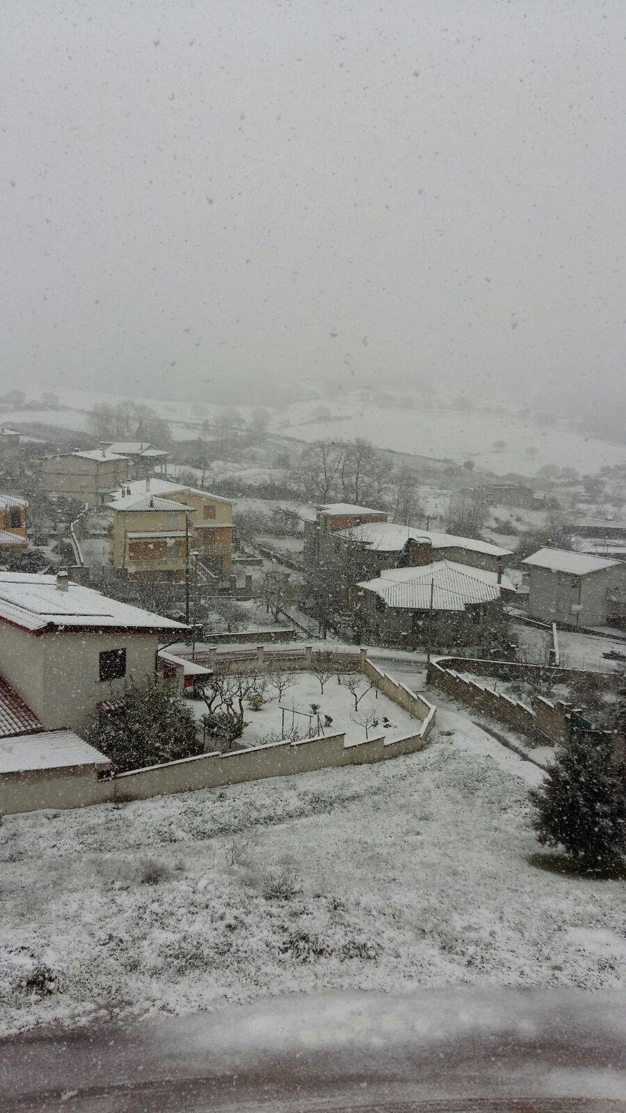 Neve-Sarule-2
