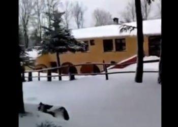 Separadorgiu 350x250 - Bruncuspina, fiocca a tratti ma c'è pochissima neve